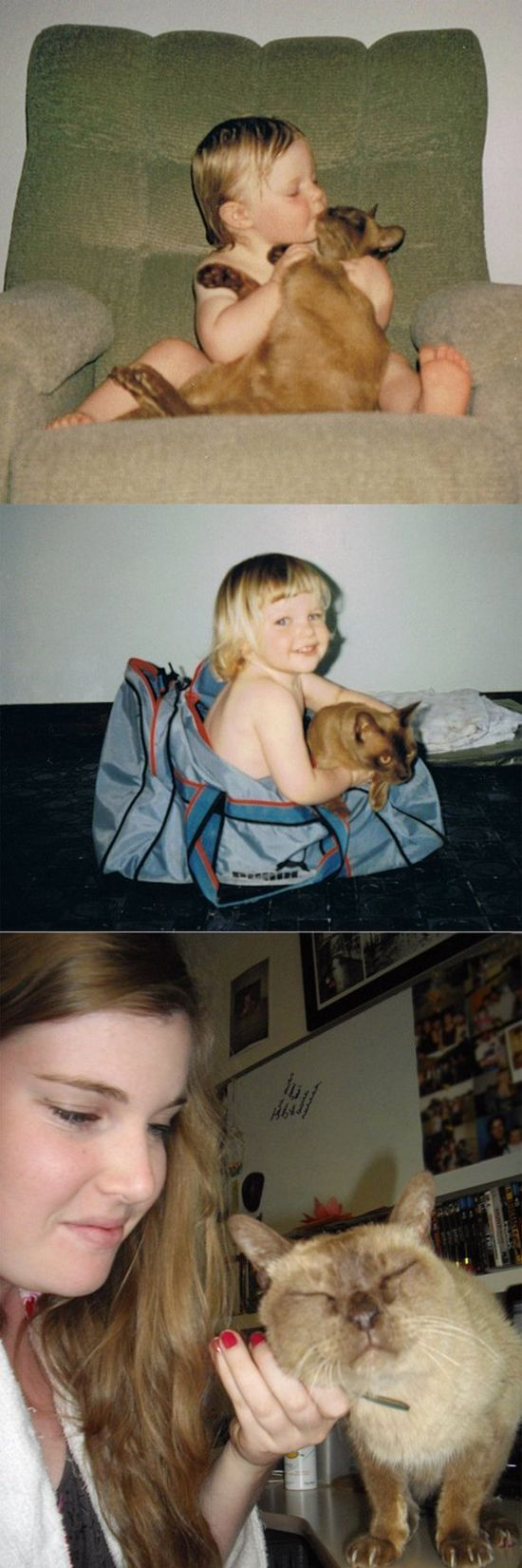 Pets Then and Now (31 pics)