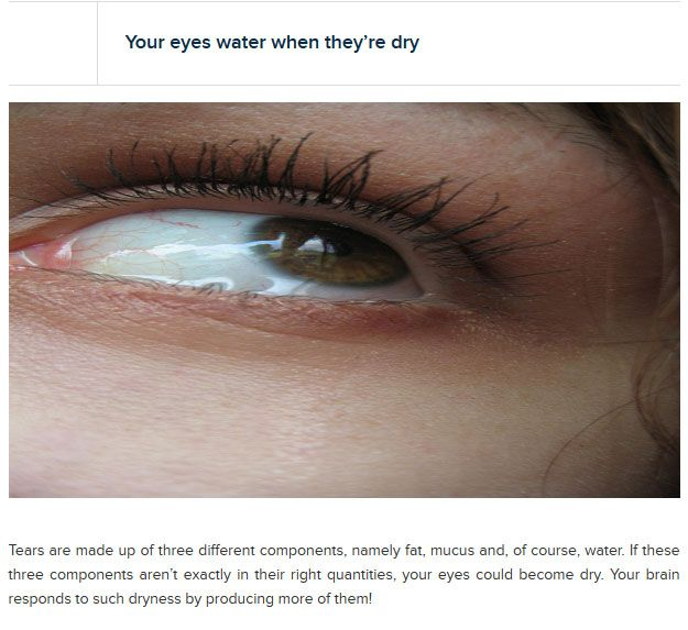 Interesting Facts About Your Eyes (25 pics)