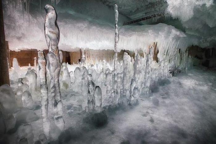 Fulton Market Cold Storage (10 pics)