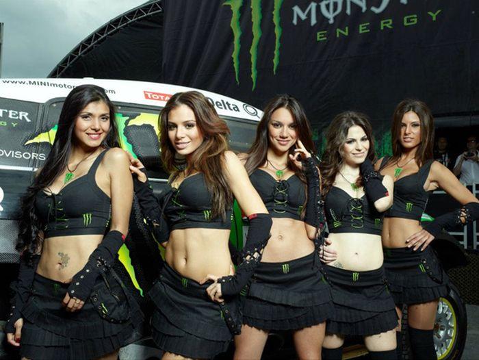 Sexy Girls of Monster Energy (44 pics)