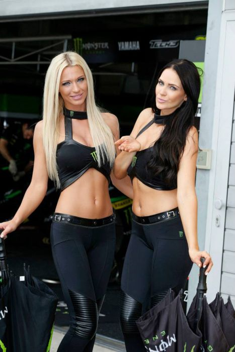 Remarkable, Sexy monster energy girls commit