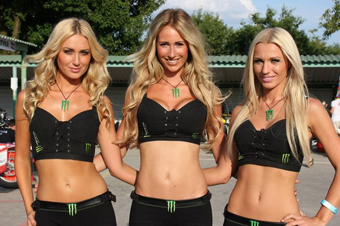 Sexy Girls of Monster Energy (44 pics)
