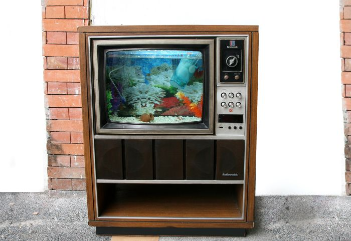 Fish Tank Made Out of an Old TV (20 pics)
