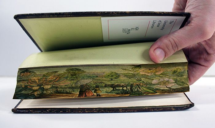 Secret Fore-Edge Paintings  (8 pics)