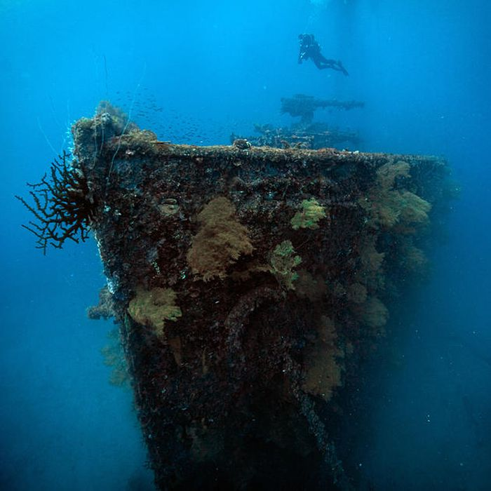 Chuuk Lagoon is the Largest Graveyard Of Ships (45 pics)