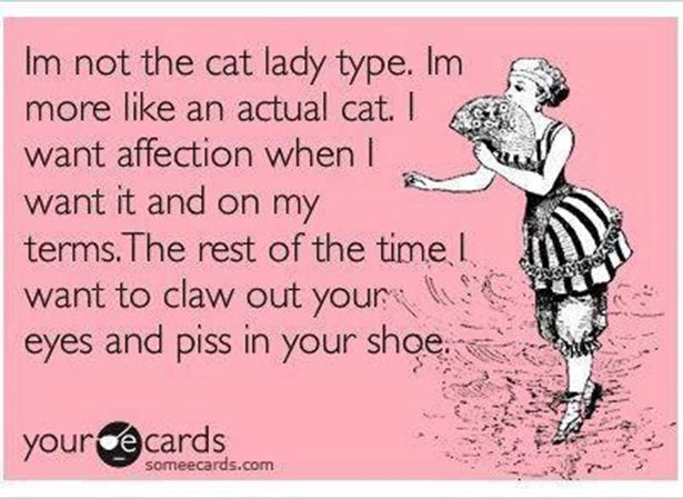 Truthful E-Cards (40 pics)