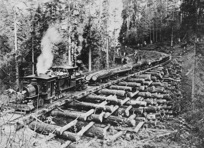 Wooden Railway Bridge (3 pics)