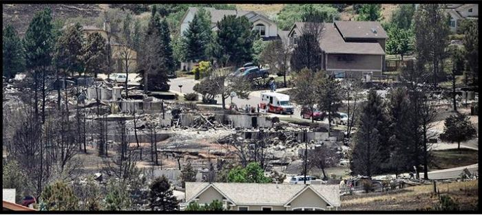 One Year After Fire (3 pics)