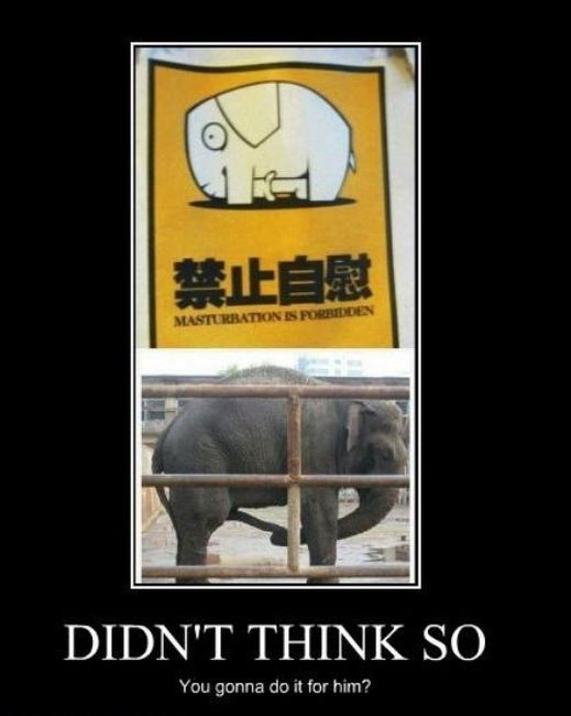Funny Demotivational Posters (26 pics)