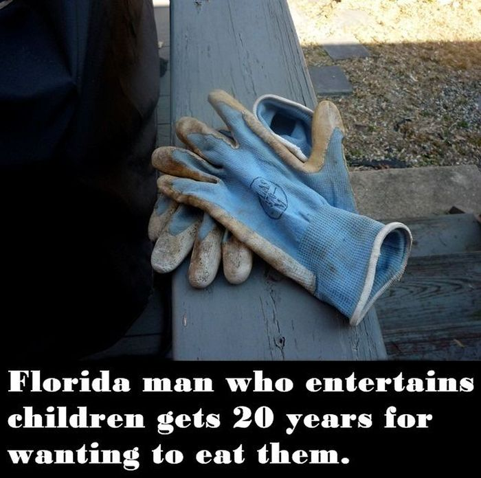 Misadventures Of Florida Man (20 pics)