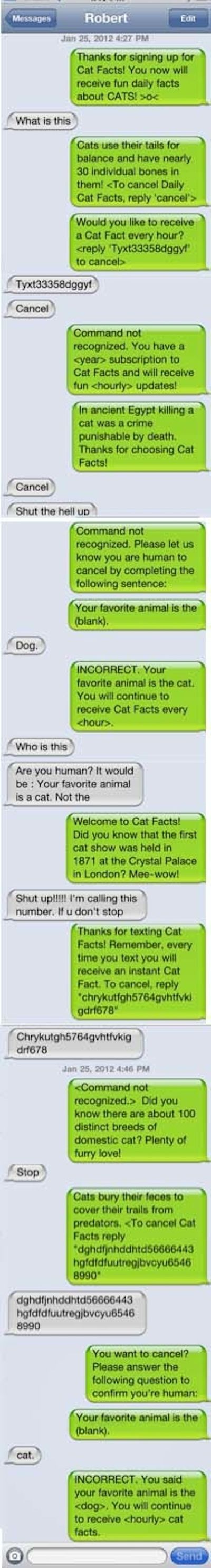 How to Respond to a Wrong Number Text (25 pics)