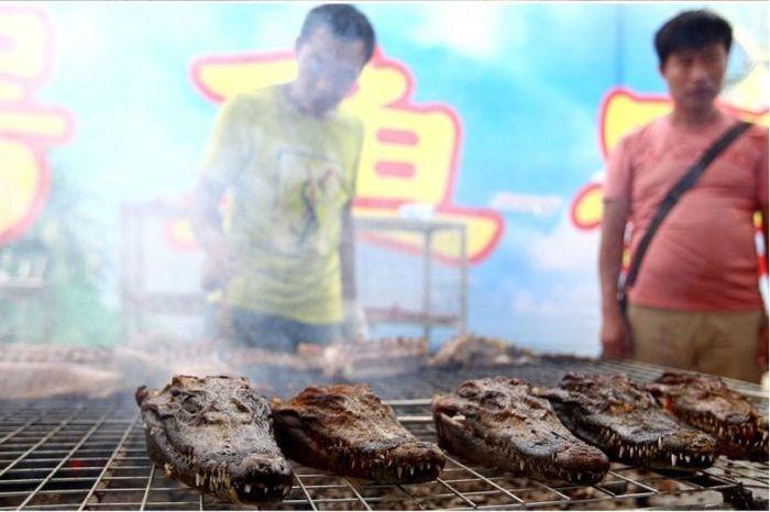 BBQ Crocodiles (4 pics)