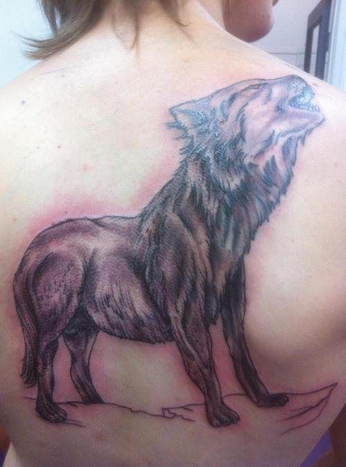Tattoo FAILs (32 pics)