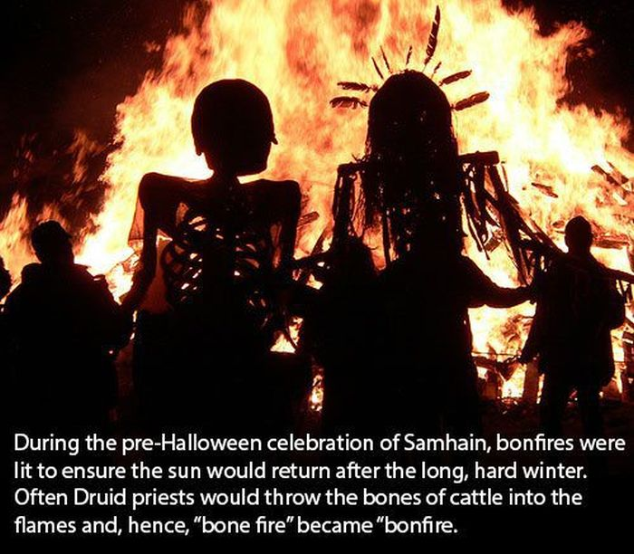 Halloween Facts (30 pics)