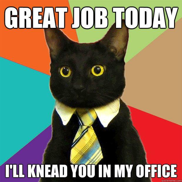 Business Cat (40 pics)