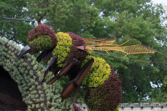 2013 Montreal International Mosaicultures (30 pics)