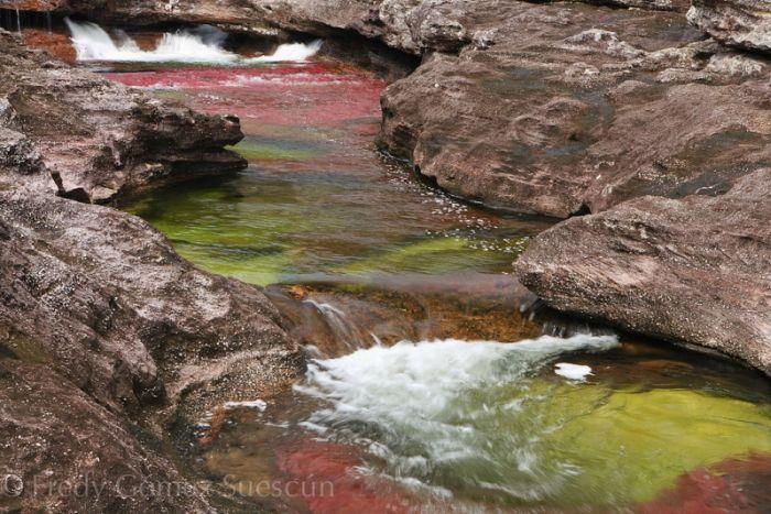 Cano Cristales aka The River of Five Colors (34 pics)