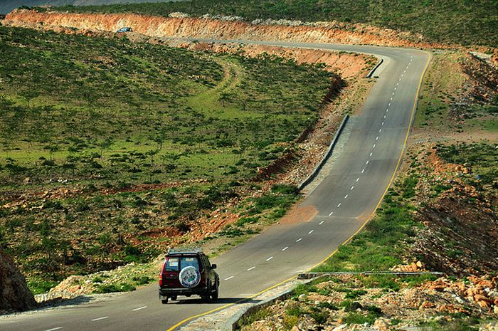 Socotra Island (35 pics)