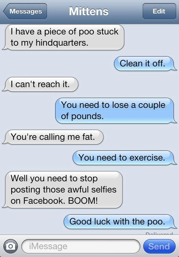 Text Messages From a Cat (8 pics)