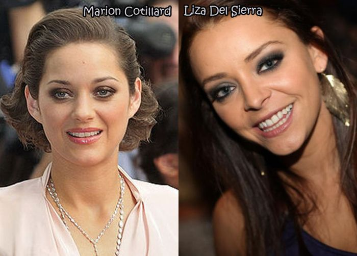 Female Celebrities And Their Pornstar Doppelgangers. Part 2 (28 pics)