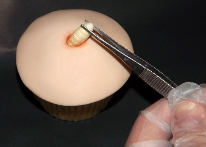Gross Cupcake (4 pics)