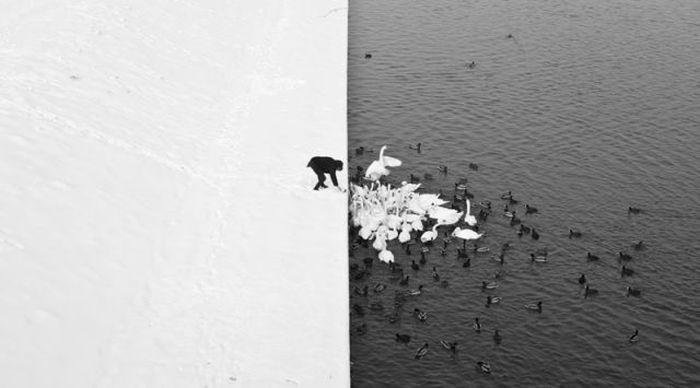 Incredible Photos (74 pics)