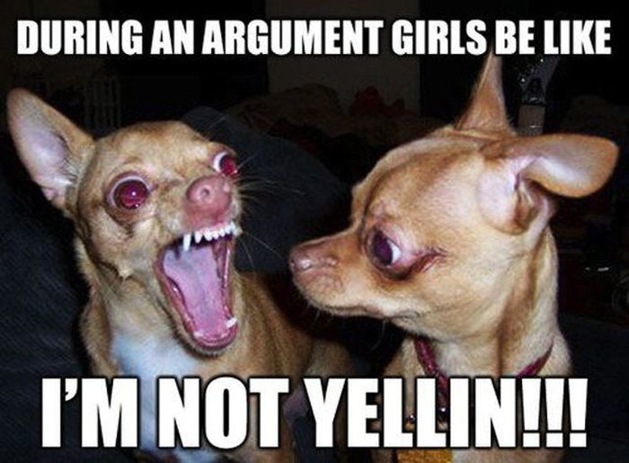 Woman's Logic (43 pics)