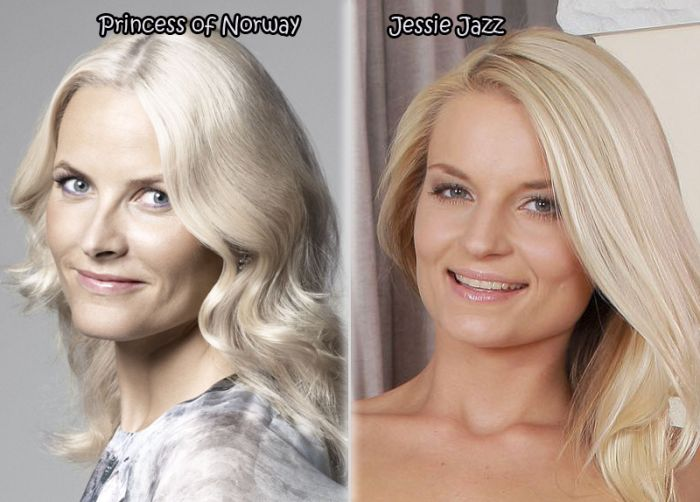 Female Celebrities And Their Pornstar Doppelgangers. Part 3 (21 pics)
