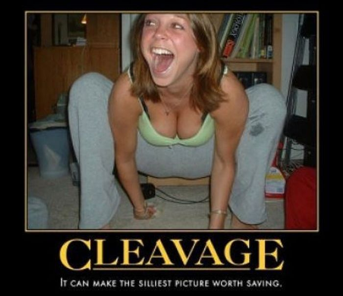 Funny Demotivational Posters (22 pics)