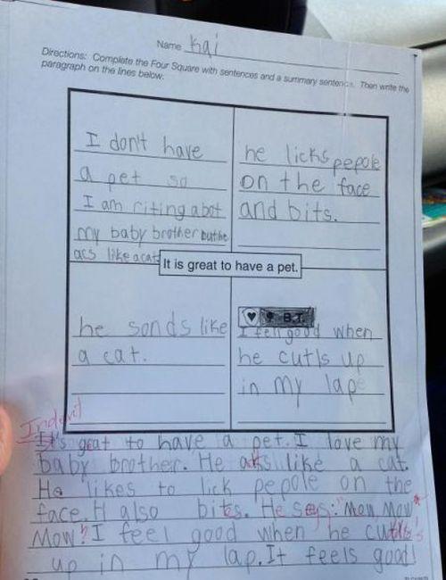 Things Kids Say (23 pics)