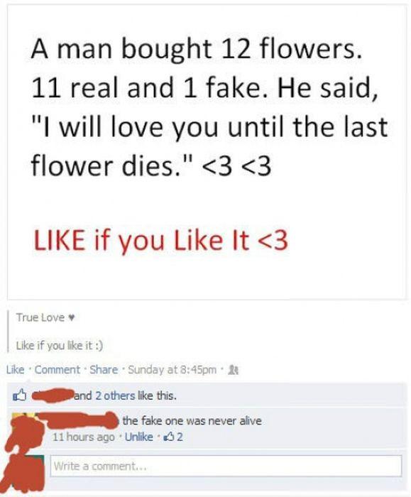 Facebook Fails and Wins. Part 5 (33 pics)