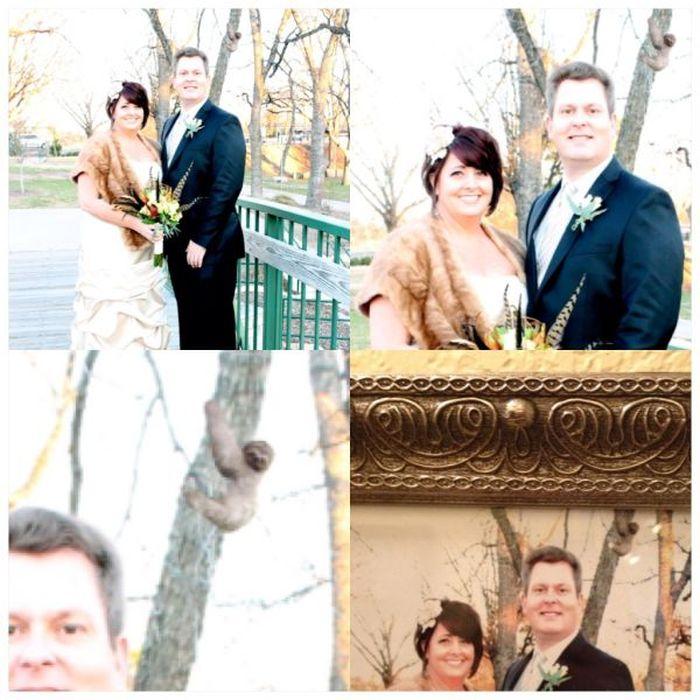 Funny Wedding Moments (48 pics)