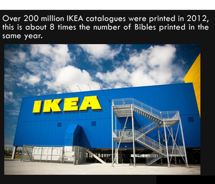 Interesting Facts. Part 7 (27 pics)