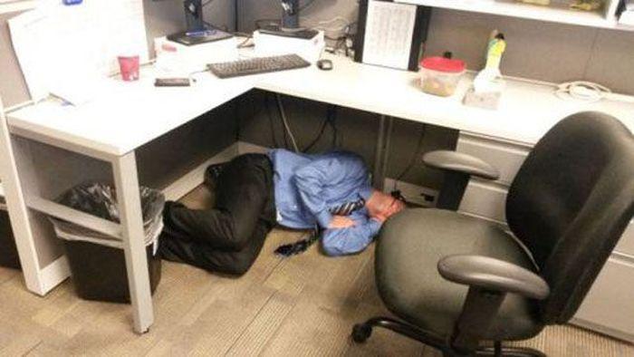 Work Fails & Job LOLs. Part 13 (42 pics)