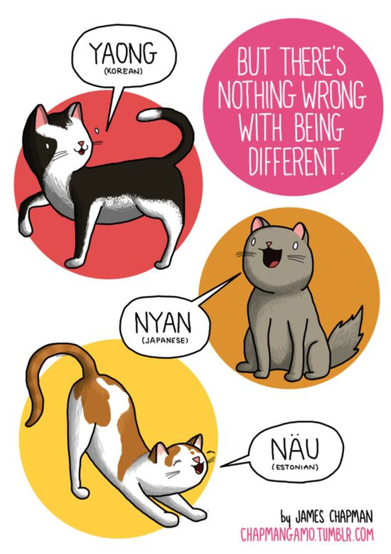What Noises Animals Make In Other Languages (11 pics)
