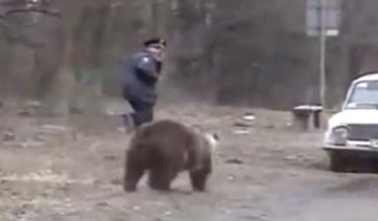 Fearless Russian People vs Wild Bears