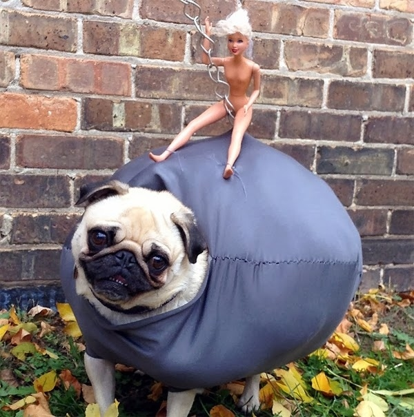 This Halloween Costume is Awesome (4 pics)