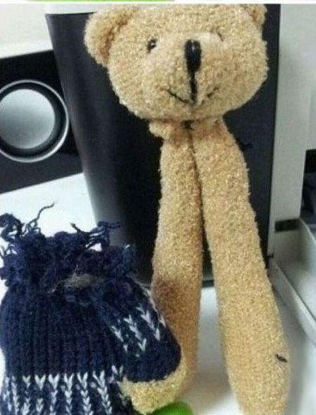 Just a Normal Teddy Bear? (2 pics)