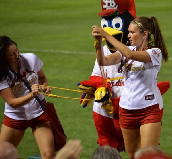 Cardinals Cheerleaders (69 pics)