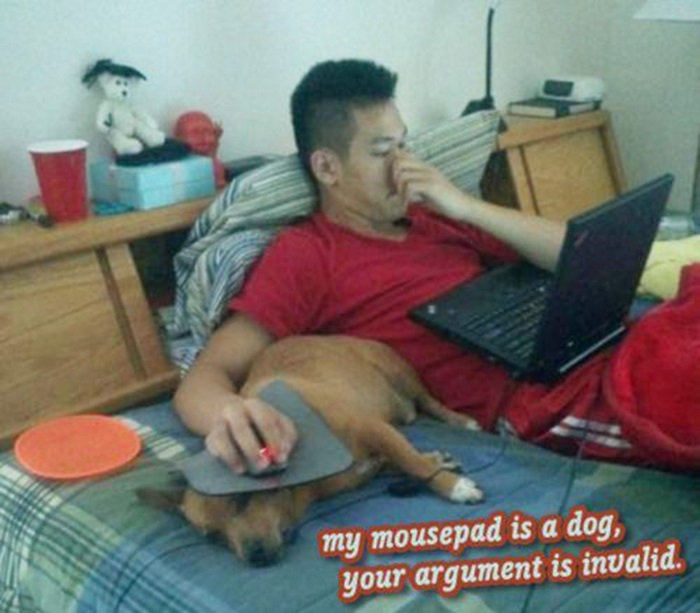 Your Argument is Invalid (45 pics)