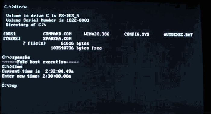 Old School MS-DOS Viruses in Action (15 gifs)