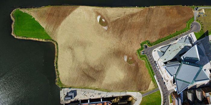 Giant Land Art Portrait (8 pics)