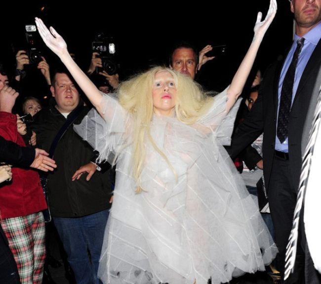 Lady Gaga Strips (14 pics)