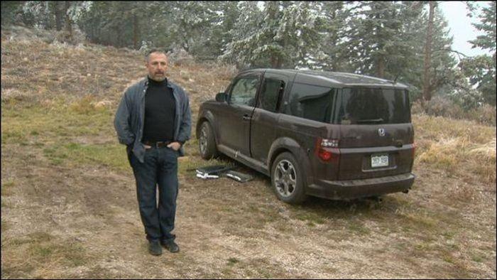 Bears vs Car (15 pics)