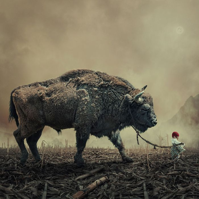 Amazing Photo Manipulations by Caras Ionut (20 pics)