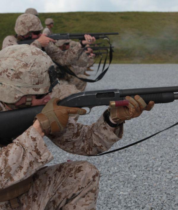 Shotguns (47 pics)