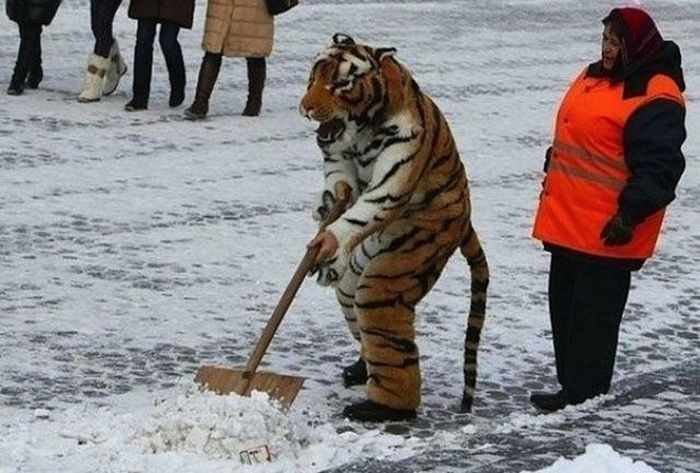 Only in Russia (43 pics)