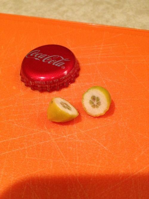 Mini Lemon (3 pics)