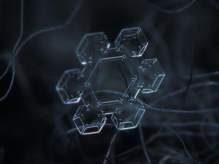 Close-Up Photos of Snowflakes (28 pics)