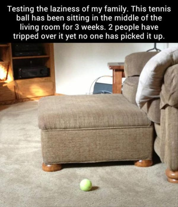We Call It Laziness (40 pics)
